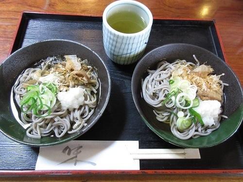 watari katuyama  (4).JPG