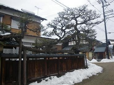 yosiehan 11-0207.JPG