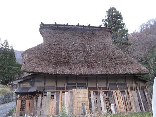 yukigakoi  (4).JPG