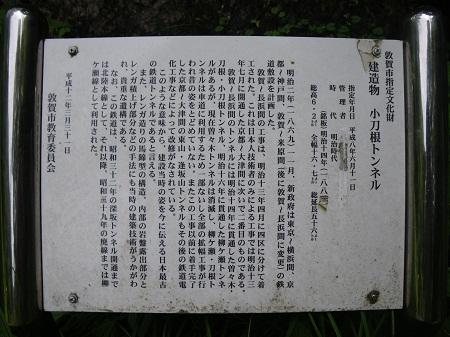zuidou 12-06 (3).JPG